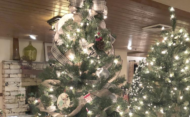 The annual Festival of Trees fundraiser for the United Way of White County will wrap up this week with a Festival of Lights reception 6 p.m. Friday, Dec. 6, at Unicoi State Park & Lodge.
