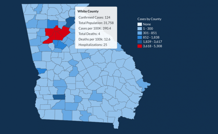 There have been 124 total confirmed COVID-19 cases in White County since the start of the pandemic, according to the update on Monday, June 15, on the Georgia Department of Public Health's website. (Image from DPH website)