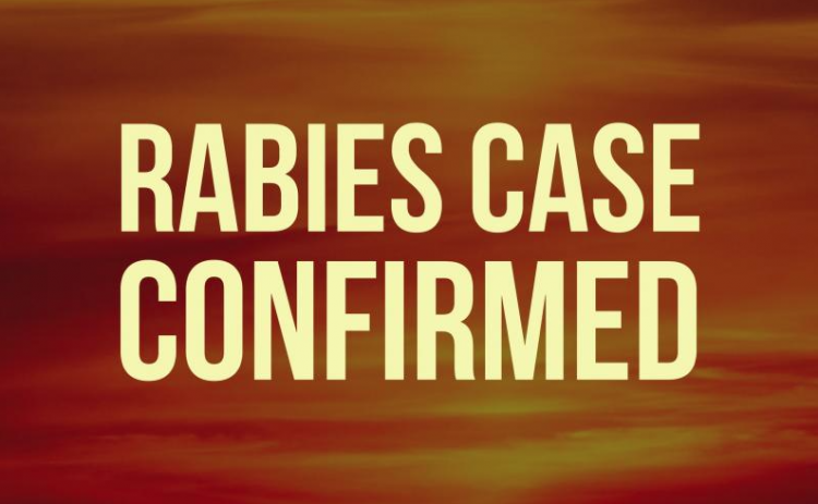 A rabid raccoon in the Walking Horse Lane area is the 15th confirmed rabies case in White County for 2020.