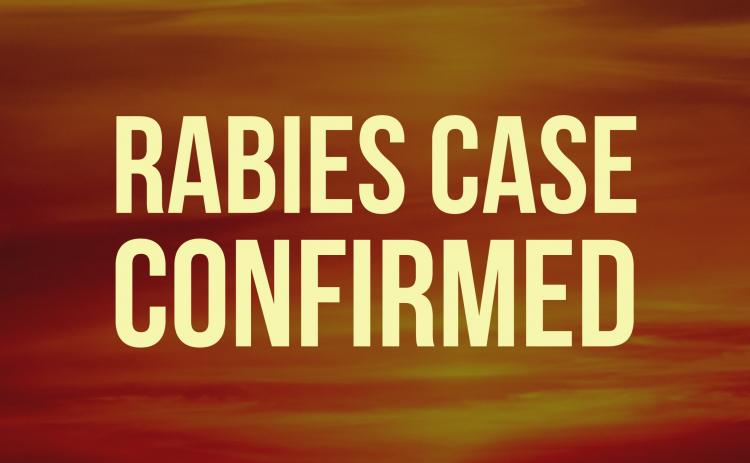 A rabid skunk in the Virgil Hunt Road area is the 18th confirmed rabies case in White County for 2020.